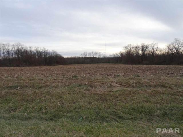 Route 150, Brimfield, IL 61517 (#1190458) :: Adam Merrick Real Estate