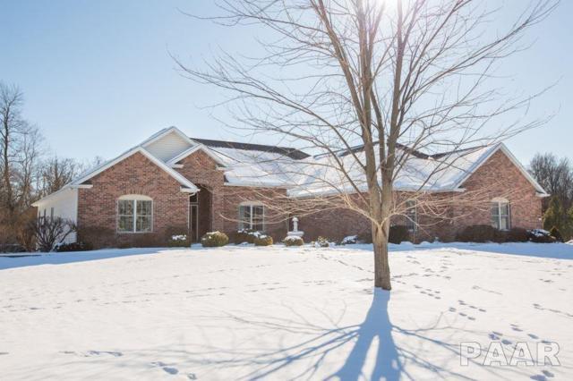 11026 N Fox Meadow Drive, Brimfield, IL 61517 (#1190490) :: Adam Merrick Real Estate