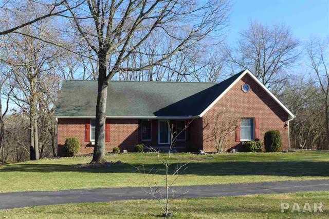 10920 N Trigger Road, Dunlap, IL 61525 (#1190702) :: Adam Merrick Real Estate