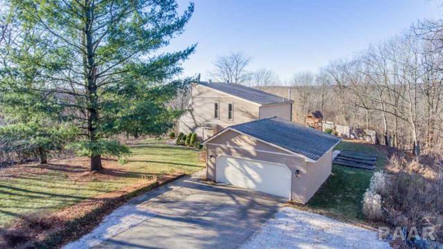 20513 N Deer Bluffs, Chillicothe, IL 61523 (#1190904) :: Adam Merrick Real Estate