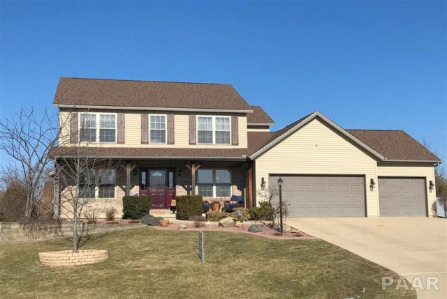 211 Karagen Circle, Germantown Hills, IL 61548 (#1190944) :: RE/MAX Preferred Choice