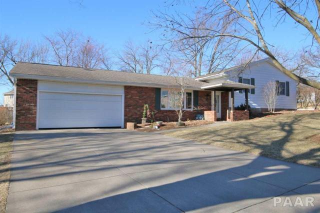 2004 Mitchell Drive, Eureka, IL 61530 (#1191161) :: Adam Merrick Real Estate