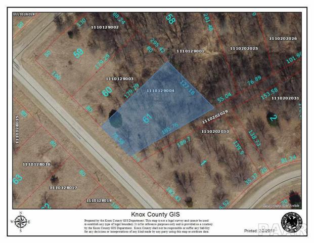 4061 Oak Run Drive South Drive, Dahinda, IL 61428 (#1191171) :: Adam Merrick Real Estate