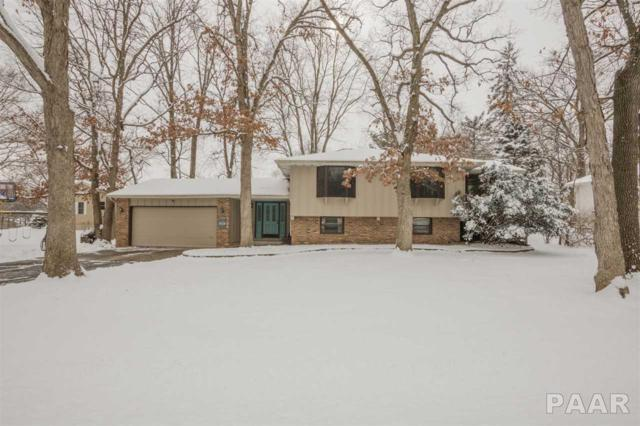 732 W South Forest Trail, Peoria, IL 61615 (#1191318) :: Adam Merrick Real Estate