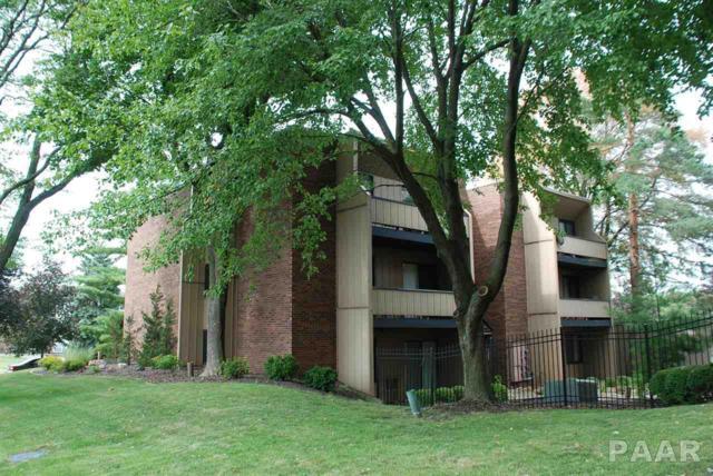 2431 W Madera Court, Peoria, IL 61614 (#1191359) :: Adam Merrick Real Estate
