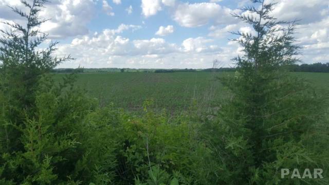 1605 Fieldstone Court, Chillicothe, IL 61523 (#1191425) :: Adam Merrick Real Estate