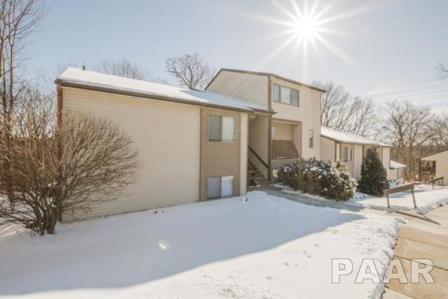 6358 N Allen Road #39, Peoria, IL 61614 (#1191451) :: Adam Merrick Real Estate