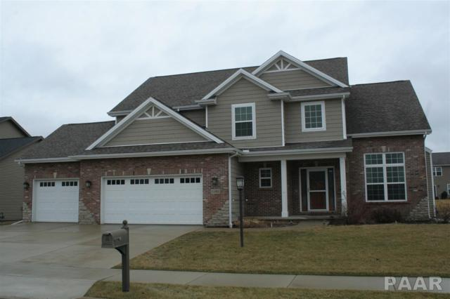 11002 N Ruby Court, Dunlap, IL 61525 (#1191534) :: RE/MAX Preferred Choice