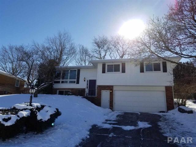 1608 W Lincolnwood Place, Peoria, IL 61614 (#1191547) :: Adam Merrick Real Estate