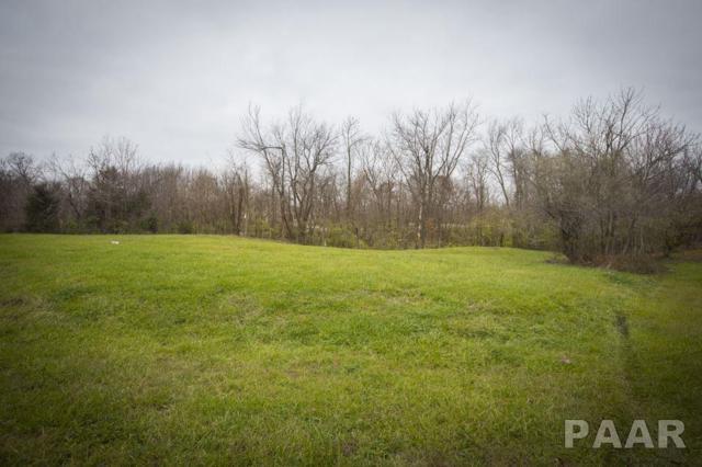 Lot 1 N Nofsinger Road, Metamora, IL 61548 (#1191993) :: Adam Merrick Real Estate