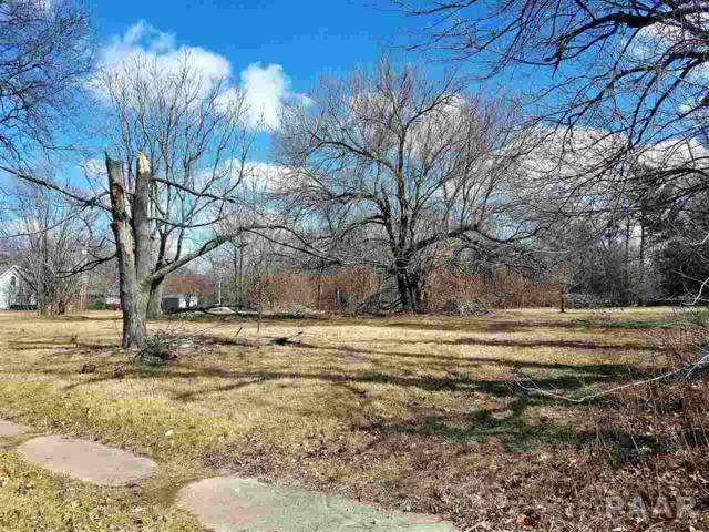 502 & 506 S Ricketts Avenue, Bartonville, IL 61607 (#1192159) :: Adam Merrick Real Estate