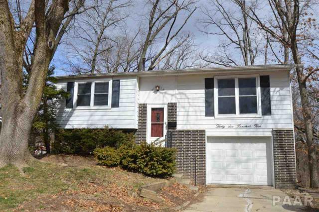 3605 W Warwick Drive, Peoria, IL 61615 (#1192161) :: Adam Merrick Real Estate