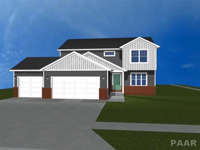 11421 Joseph, Dunlap, IL 61525 (#1192176) :: Adam Merrick Real Estate