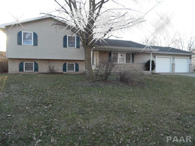 203 Worner Street, Green Valley, IL 61534 (#1192192) :: Adam Merrick Real Estate