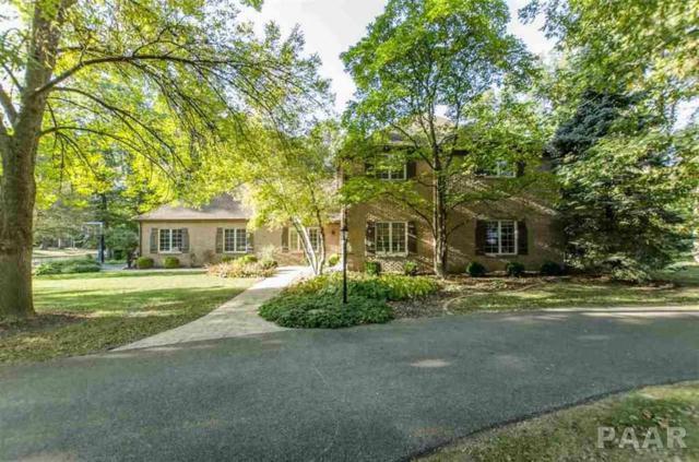 9824 N Thousand Oaks Court, Peoria, IL 61615 (#1192723) :: Adam Merrick Real Estate