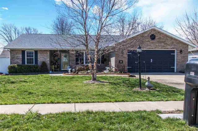 530 Cottonwood Circle, East Peoria, IL 61611 (#1193479) :: RE/MAX Preferred Choice
