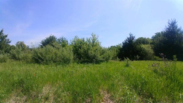 143 Oak Run Drive, Dahinda, IL 61428 (#1194724) :: Adam Merrick Real Estate