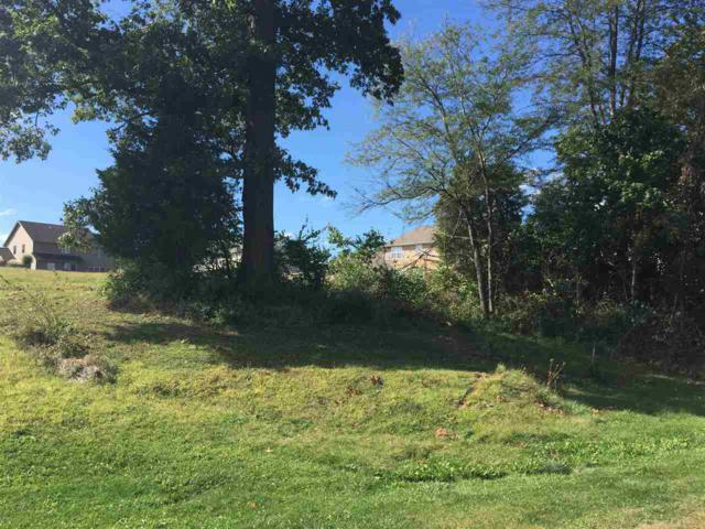 Lot 49A Winterberry, Germantown Hills, IL 61548 (#1195323) :: RE/MAX Preferred Choice