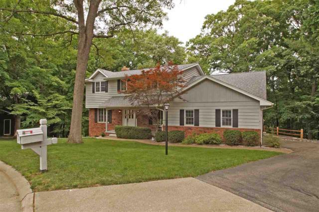 113 W Wood Ridge Drive, Dunlap, IL 61525 (#1195520) :: RE/MAX Preferred Choice