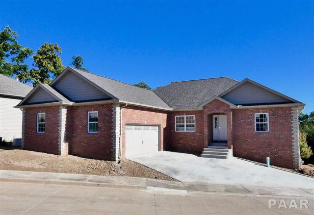 2603 Lake Pointe Terrace, Peoria, IL 61614 (#1199148) :: Adam Merrick Real Estate