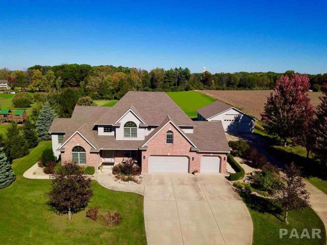 23370 Spring Creek Road, Washington, IL 61571 (#1199216) :: RE/MAX Preferred Choice
