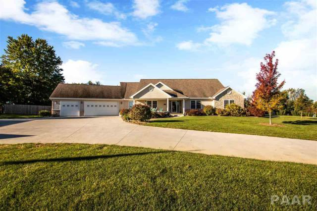 100 Cayman Lane, Washington, IL 61571 (#1199228) :: RE/MAX Preferred Choice