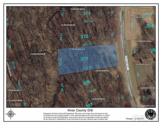 309 Sweet Briar, Dahinda, IL 61428 (#1199293) :: Adam Merrick Real Estate