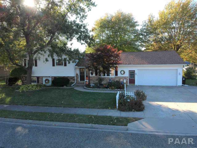 401 S Minnesota Avenue, Morton, IL 61550 (#1199318) :: Adam Merrick Real Estate