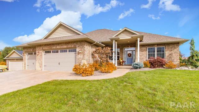 117 Shadow Creek, Washington, IL 61571 (#1199445) :: Adam Merrick Real Estate