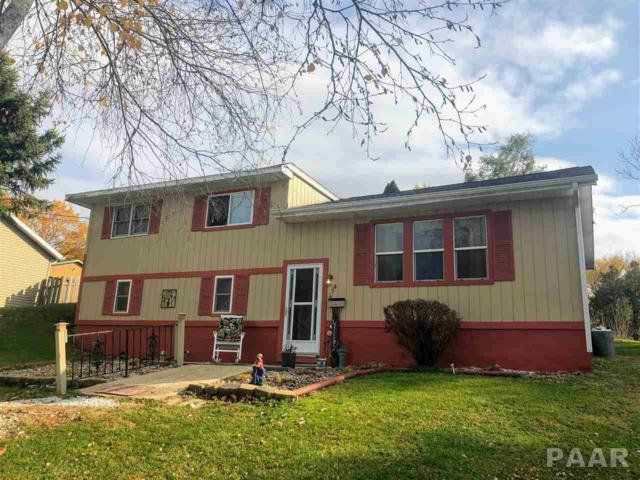 454 Mulberry, Canton, IL 61520 (#1199490) :: Adam Merrick Real Estate