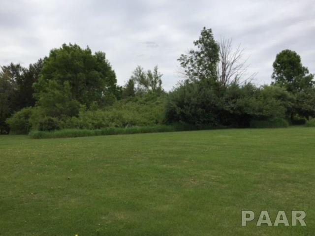 5 Fleetwood, Mackinaw, IL 61755 (#1199583) :: Adam Merrick Real Estate