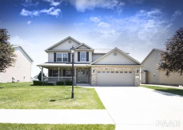 717 Pintail, Washington, IL 61571 (#1199628) :: The Bryson Smith Team