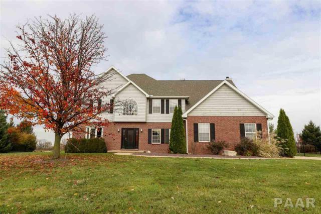 11737 N Bristol Drive, Dunlap, IL 61525 (#1199645) :: Adam Merrick Real Estate