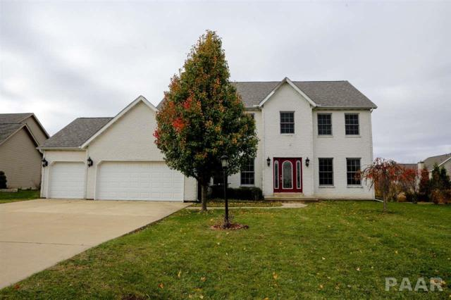 1105 Winterberry Avenue, Germantown Hills, IL 61548 (#1199753) :: RE/MAX Preferred Choice