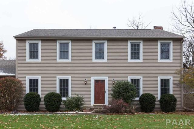 608 W Hickory Grove Court, Dunlap, IL 61525 (#1199942) :: The Bryson Smith Team