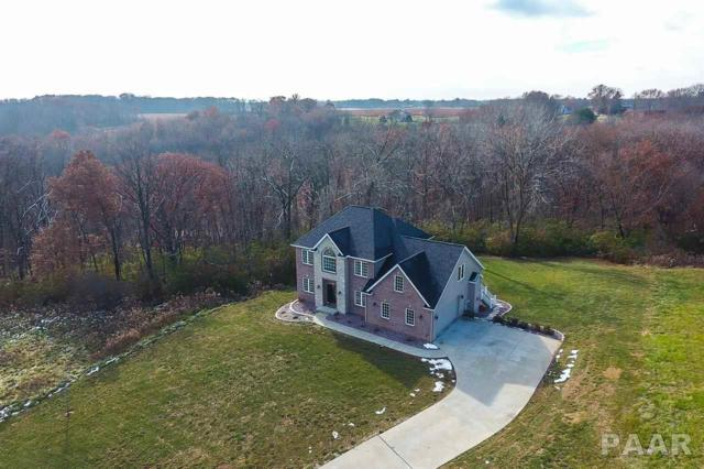 4115 S Deer Run, Bartonville, IL 61607 (#1199959) :: Adam Merrick Real Estate