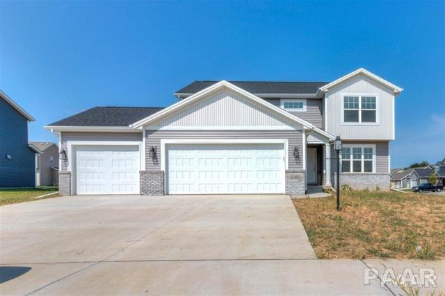 11421 Joseph, Dunlap, IL 61525 (#1200121) :: Adam Merrick Real Estate