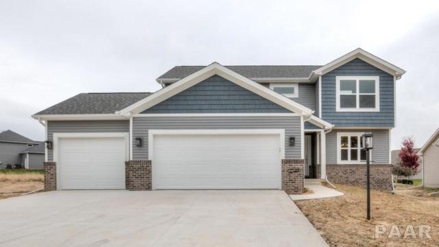 7020 N Water Oak, Edwards, IL 61528 (#1200169) :: Adam Merrick Real Estate