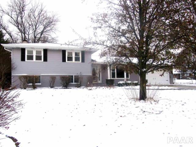 4402 W Ducharme Avenue, Bartonville, IL 61607 (#1200199) :: Adam Merrick Real Estate