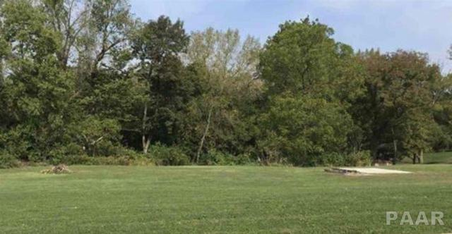 1044 Kern Road, Washington, IL 61571 (#1200282) :: Adam Merrick Real Estate