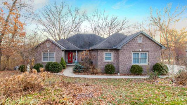 10118 W Lamplighter Lane, Hanna City, IL 61536 (#1200383) :: Adam Merrick Real Estate