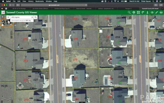809 Agnes Street, Washington, IL 61571 (#PA1200581) :: Adam Merrick Real Estate