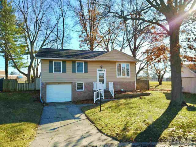 239 Briarcliff Drive, Washington, IL 61571 (#1200749) :: The Bryson Smith Team