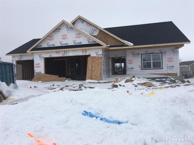 11301 N Chesapeake Lane, Dunlap, IL 61525 (#1201116) :: Adam Merrick Real Estate