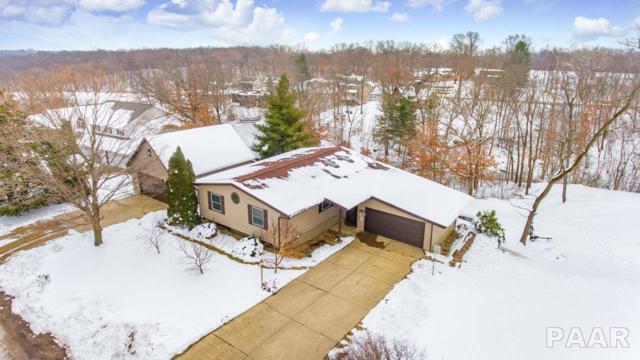 9602 W Whittingham Point, Mapleton, IL 61547 (#1201174) :: Adam Merrick Real Estate