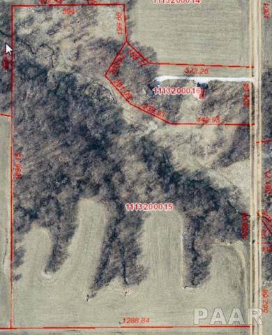 00 N Windish Road, Elmwood, IL 61529 (#PA1201298) :: Adam Merrick Real Estate