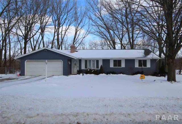 1386 N Hickory Hills Road, Metamora, IL 61548 (#1201429) :: The Bryson Smith Team
