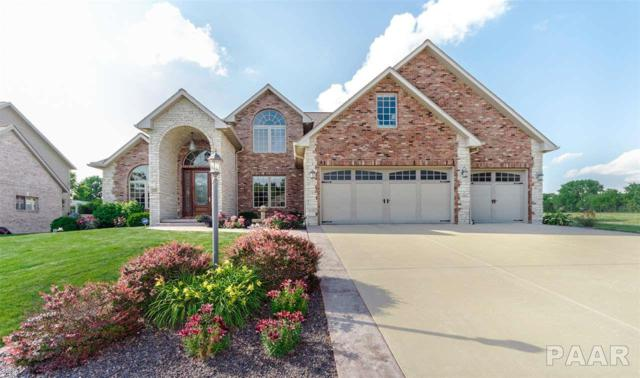 2211 W Pinnacle Drive, Dunlap, IL 61525 (#1201515) :: Adam Merrick Real Estate