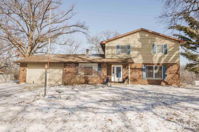 252 Whispering Oaks Drive, Germantown Hills, IL 61548 (#1201728) :: RE/MAX Preferred Choice
