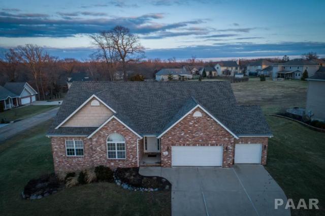 1217 Winterberry Avenue, Germantown Hills, IL 61548 (#1201752) :: Adam Merrick Real Estate